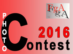 LOGO PHOTOCONTEST 2016